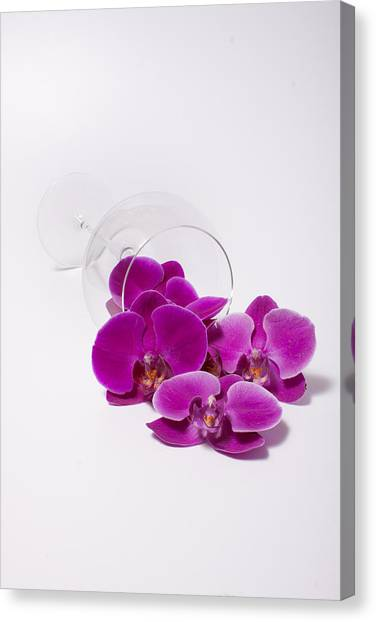 Phalenopsis Canvas Print - Spilled Orchids  54 by W Chris Fooshee