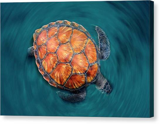 Sea Life Canvas Print - Spin Turtle by Sergi Garcia