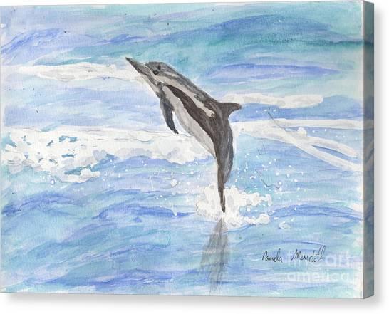 Spinner Dolphin Canvas Print