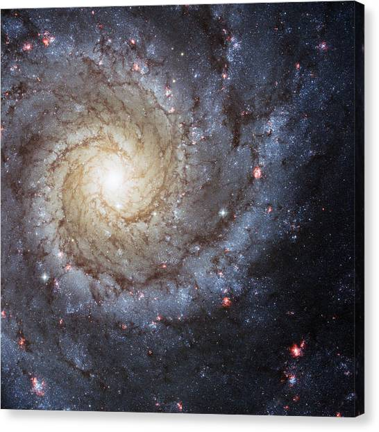 Aliens Canvas Print - Spiral Galaxy M74 by Adam Romanowicz