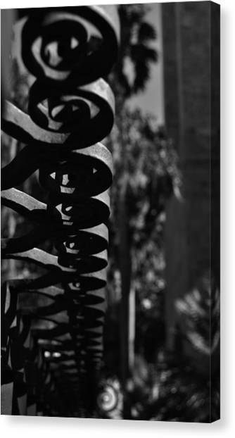 Spiraling  Canvas Print by Tara Miller