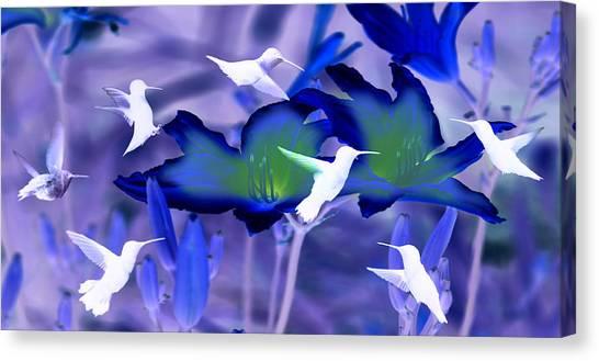Spirit Of The Humming Bird Canvas Print