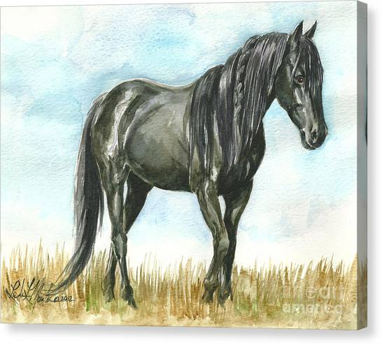 Spirit Wild Horse In Sanctuary Canvas Print