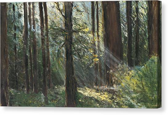 Spirit Woods Canvas Print