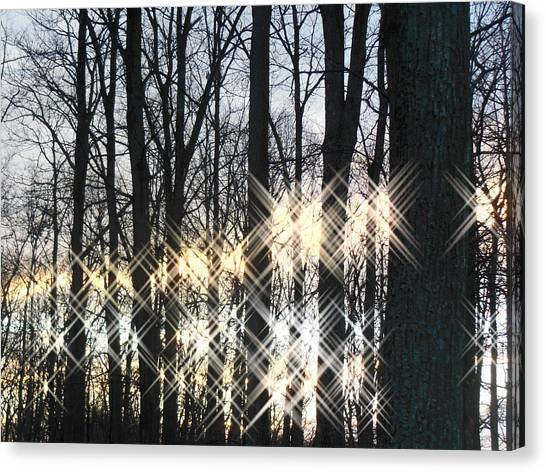 Spirits In The Woods Canvas Print by Sharon Costa