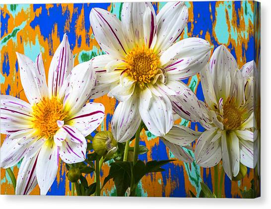 Fireworks Canvas Print - Splash Of Color by Garry Gay