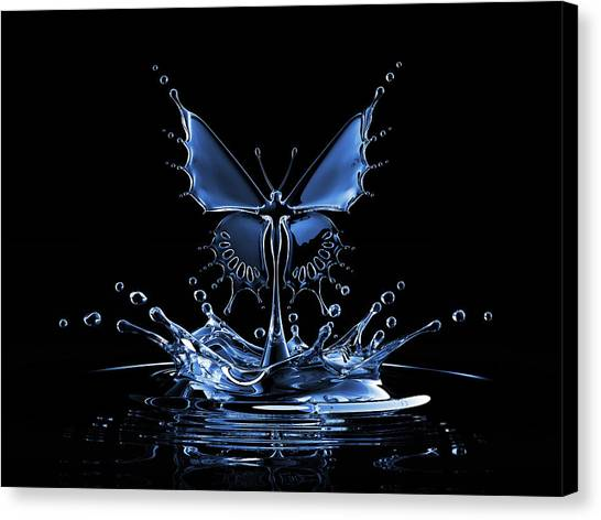 Splash Of Water Butterfly Canvas Print by Blackjack3d
