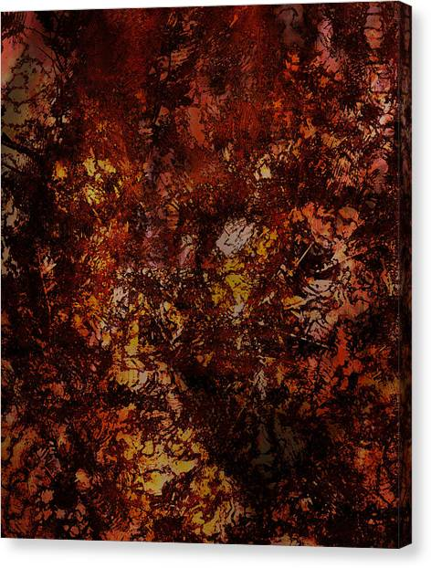 Splattered  Canvas Print