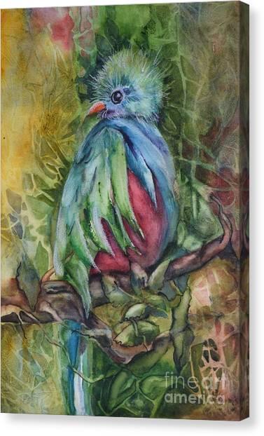 Splendor In The Canopy Canvas Print