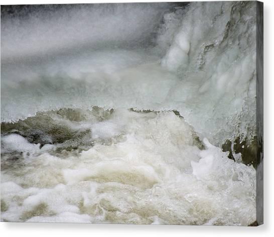 Splish Splash Canvas Print by Gene Cyr