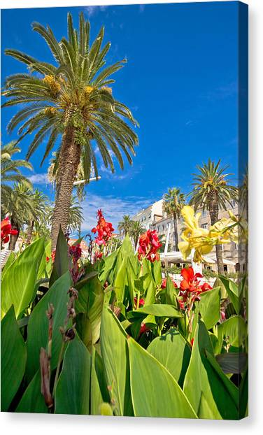 Split Riva Palms And Flowers Canvas Print