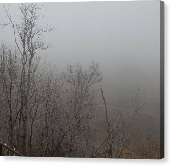 Spooky Scary Trees Canvas Print