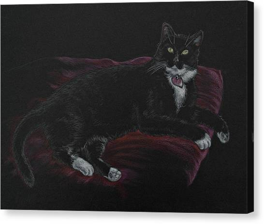 Spooky The Cat Canvas Print