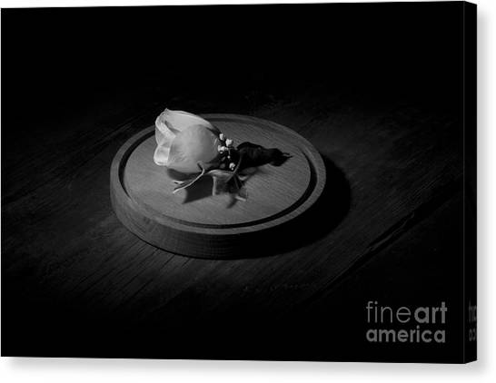 Wooden Platters Canvas Print - Spot-lit White Rose by Josh Campbell