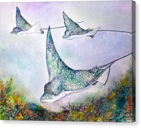 Spotted Eagle Rays Canvas Print