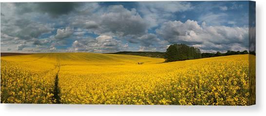 Spring At Oilseed Rape Field Canvas Print