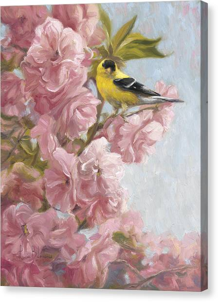Spring Trees Canvas Print - Spring Blossoms by Lucie Bilodeau