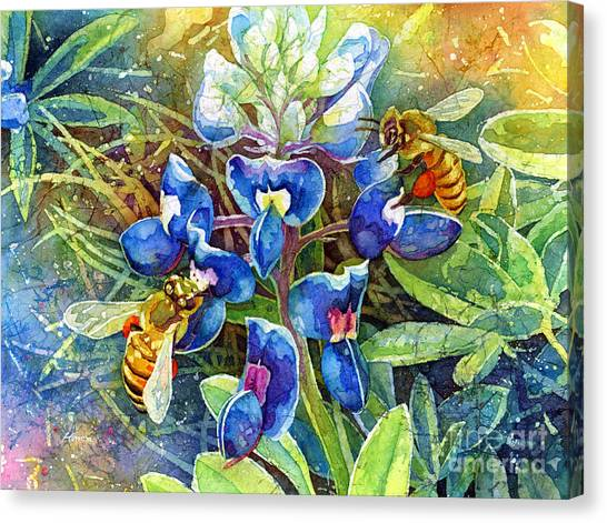 Bluebonnets Canvas Print - Spring Breeze by Hailey E Herrera