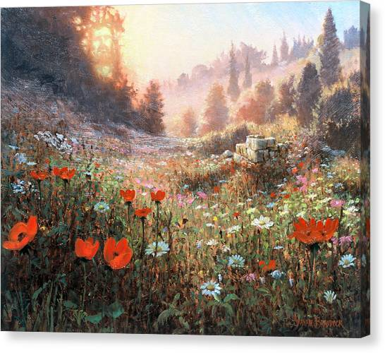 Spring Carpet Mt Carmel Canvas Print