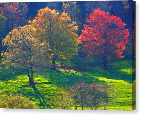 Spring Color Just Down The Road Canvas Print by Alan Olansky