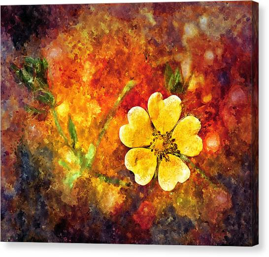 Spring Color Canvas Print