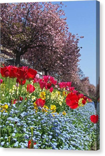 Spring Flowers - Edinburgh Canvas Print