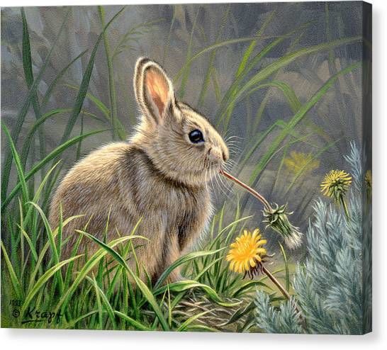Rabbits Canvas Print - Spring Cottontail by Paul Krapf