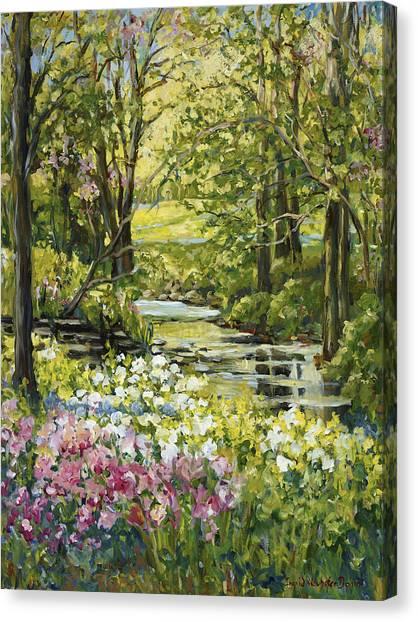 Spring Creek Rockford Il Canvas Print