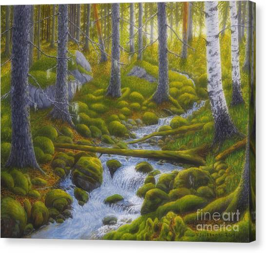 Mossy Forest Canvas Print - Spring Creek by Veikko Suikkanen