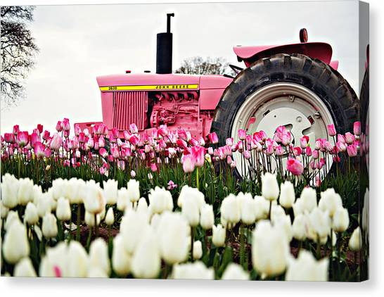 Spring Fever  Canvas Print by Michelle Bauer
