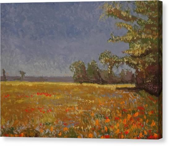 Spring Field Canvas Print by Paul Benson
