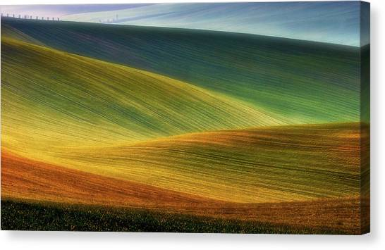 Rolling Hills Canvas Print - Spring Fields by Piotr Krol (bax)
