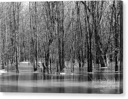 Spring Flooding Canvas Print by Sophie Vigneault