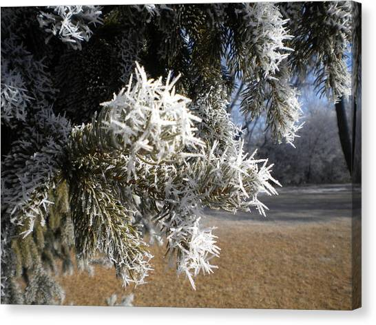 South Dakota Canvas Print - Spring Frost by Jesse Peterson