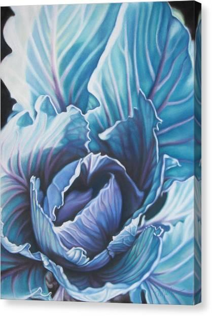 Spring Garden Cabbage Canvas Print