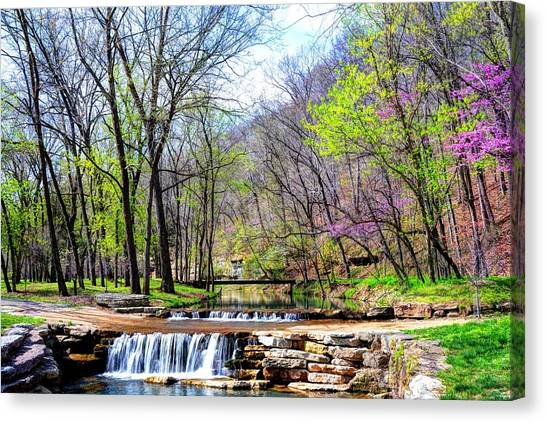 Spring In Dogwood Canyon Canvas Print
