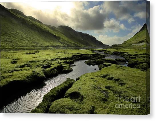 Spring In Scotland Valley Canvas Print by Matt Tilghman