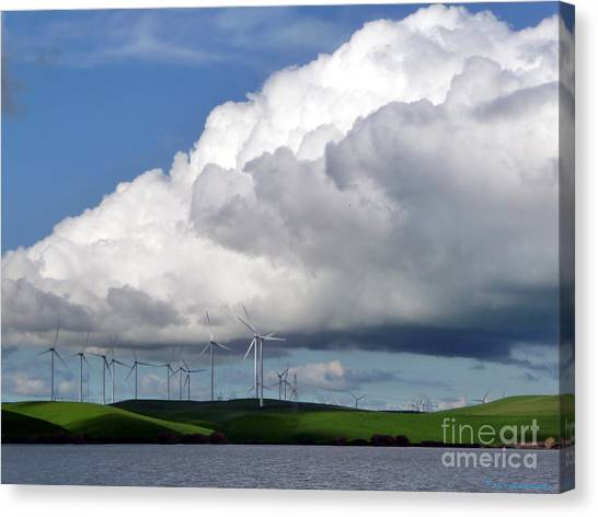 Spring In The Delta Canvas Print