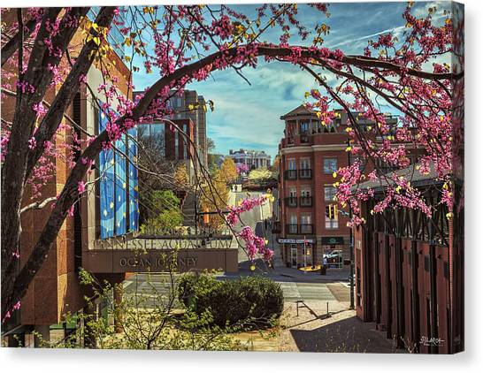 Spring In The Scenic City Canvas Print