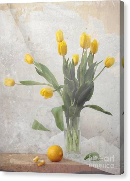 Spring Canvas Print by Irina No