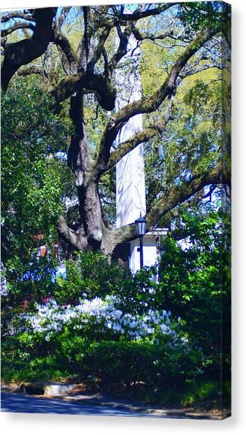 Spring Monolith Canvas Print