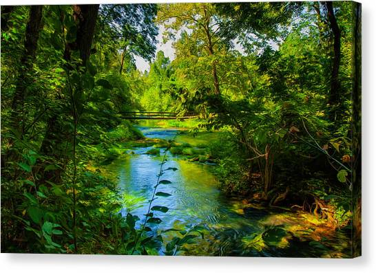 Spring Of Wonderment Canvas Print