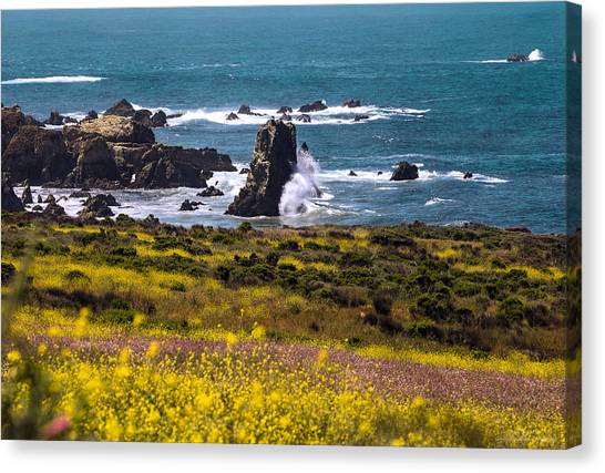 Spring On The California Coast By Denise Dube Canvas Print