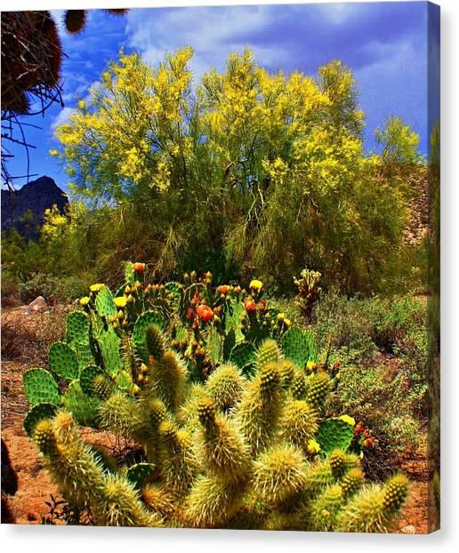 Spring On The Desert Canvas Print