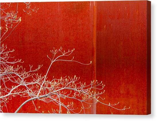 Spring Rust Canvas Print