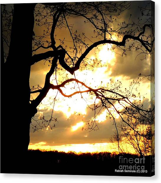 Spring Sunset Canvas Print