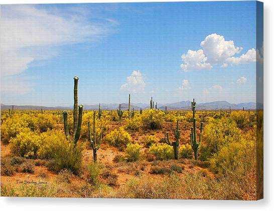 Spring Time On The Rolls - Arizona. Canvas Print