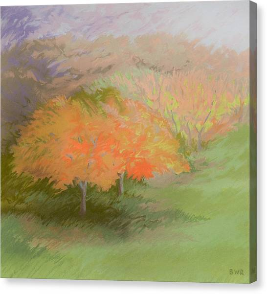 Spring Trees Canvas Print by Bruce Richardson