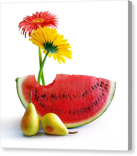 Melons Canvas Print - Spring Watermelon by Carlos Caetano