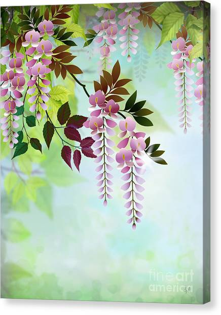 Red Rose Drawings Canvas Print - Spring Wisteria by Peter Awax